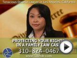 Family Law Attorneys in Los Angeles, CA